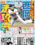 Nikkan Sports